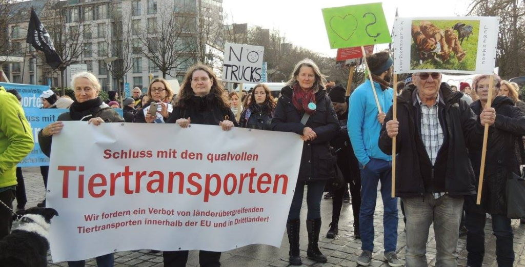 Demo Tiertransporte Brüssel Tiertransporte-Banner